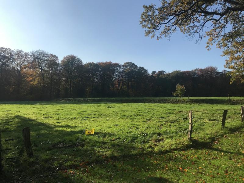 Uitzicht over veld en bossen in Twente.