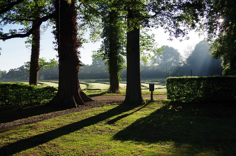 Uitzicht over veld tussen de bomen door in Twente.